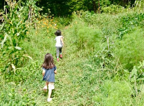 自然と子供