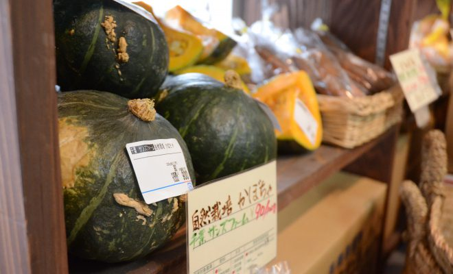 使用天然菌種的原創發酵商品,以及來自全國各地自然栽種的蔬菜們。Natural Harmony銀座店【銀座】
